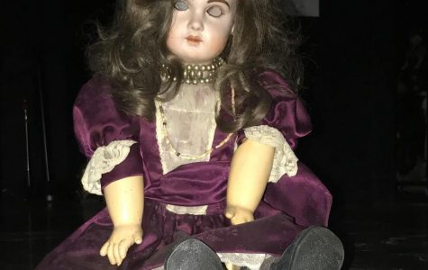 Local business claims to have most haunted  doll in WORLD