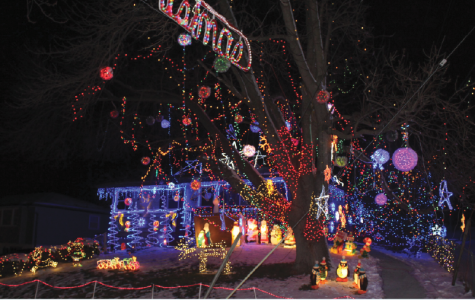 Local light display has ties to Bear Country, promotes community pride
